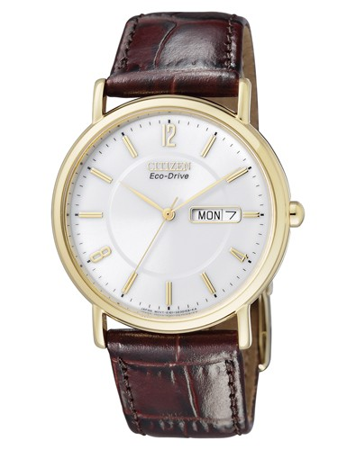 Citizen Eco Drive Basic